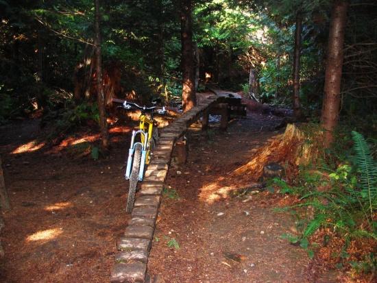 monutain bike Bellingham gps