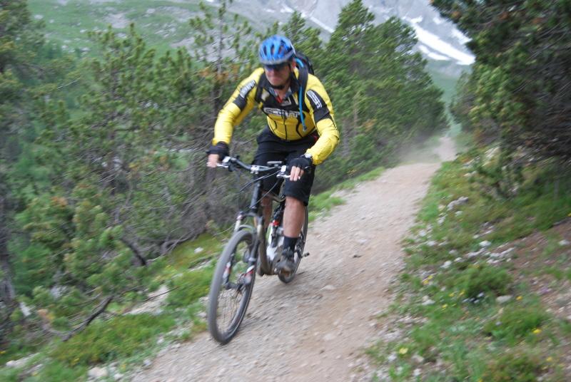 mountain bike elettrica flyer