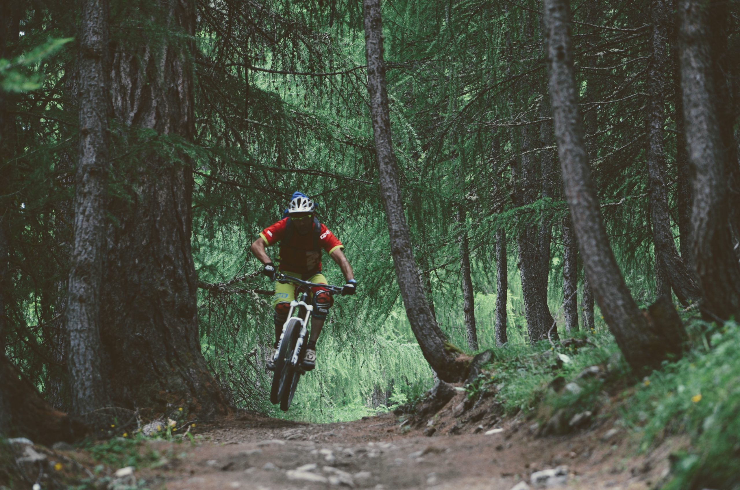 Bests Mtb Livigno Trails